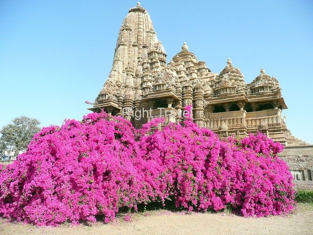 India Khajuraho Temple with Flowers