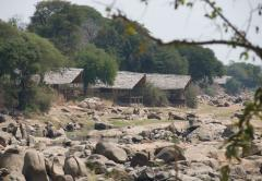 Foxes Ruaha River Lodge