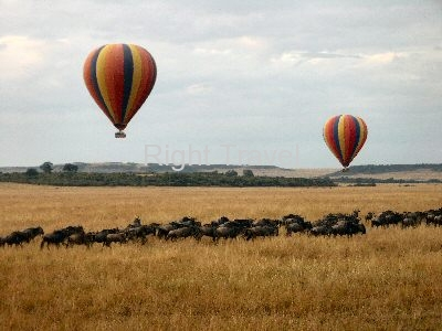 8 Day Best of Kenya Tour